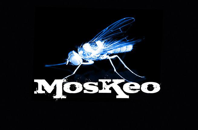 "La noche se acerca - Moskeo en ""raulense.wordpress.com"""